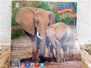 Zoo safari and adventure parks